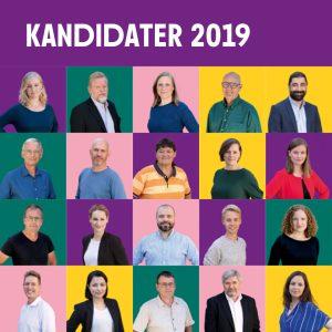 Kandidater til Folketinget